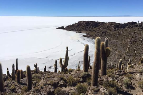3D/2N Tour with Return to Uyuni or Transfer San Pedro Atacama Chile