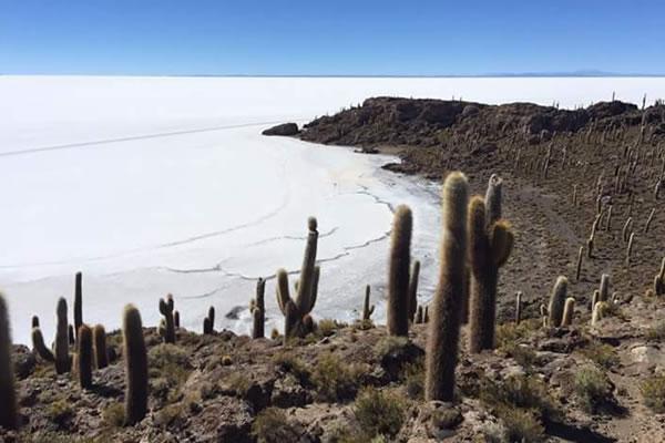 Tours de 3D/2N con Retorno a Uyuni o Transfer San Pedro Atacama Chile