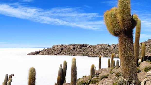Resultado de imagem para isla incahuasi
